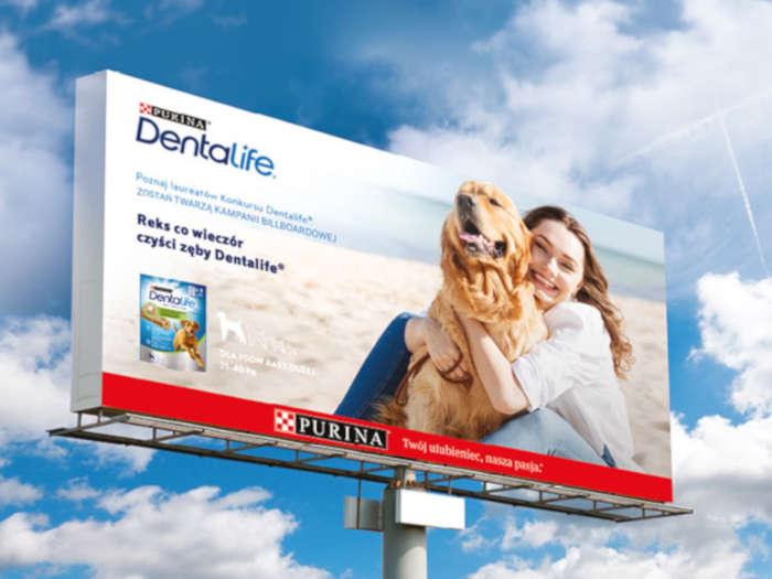 modelka i pies na billboardzie